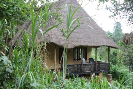 Volcanoes Bwindi Camp