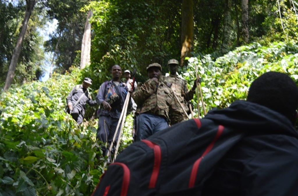 Uganda gorilla sedan chairs, People with disability treks