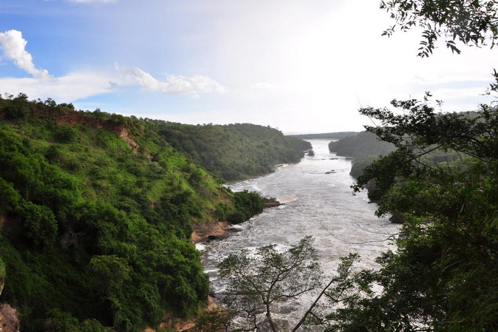 Delta Cruise – Nile River, Murchison Falls National Park