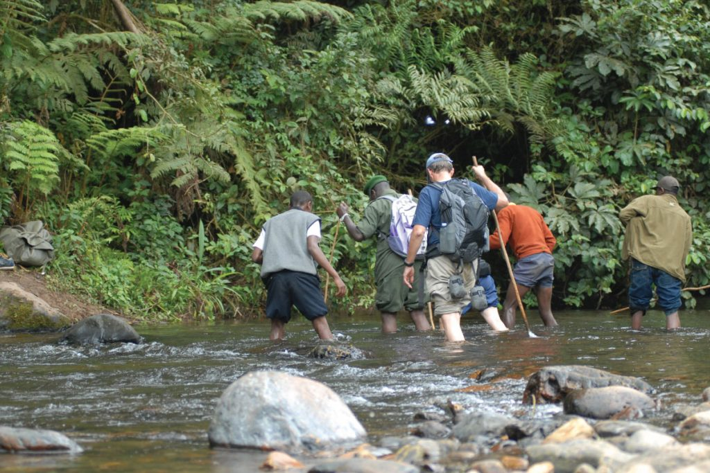 Gorilla trekking helpers