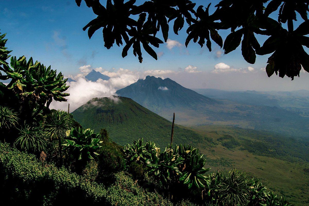 4 Day Gorillas and Mountain Sabinyo Hiking