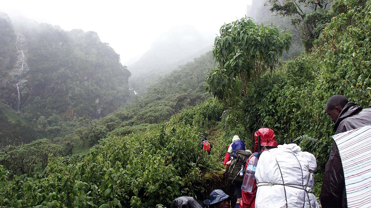 rwenzori mountain hiking