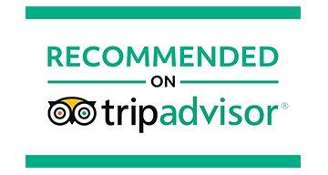 trip advisisor