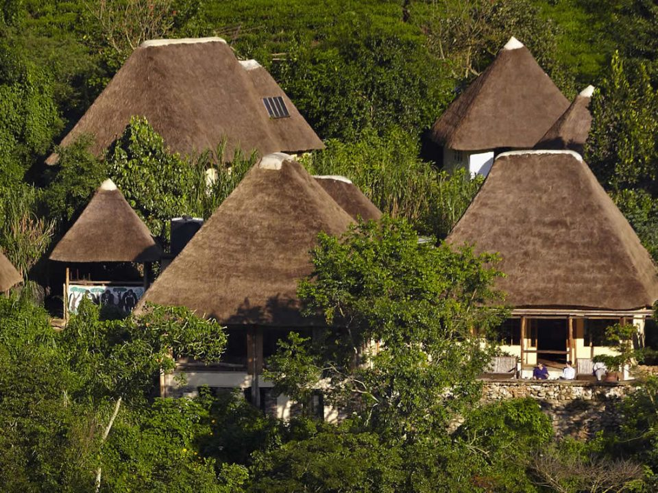 Bwindi Gorilla Lodge-Impact of COVID-19 on the Hotels and Lodges in Uganda