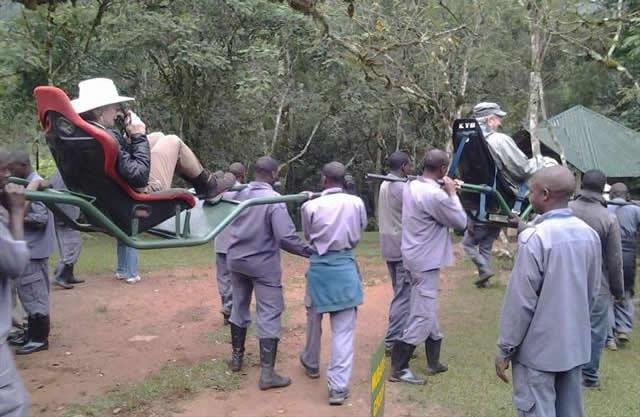 Gorilla trekking sedan chair/stretchers