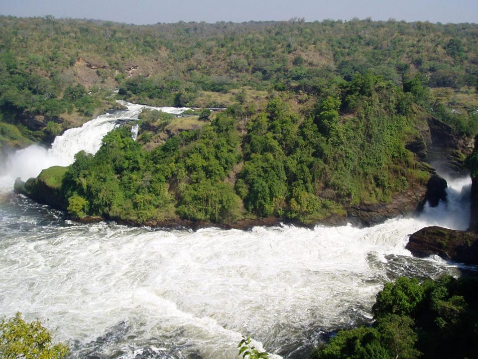 What see and do in Murchison falls National Park
