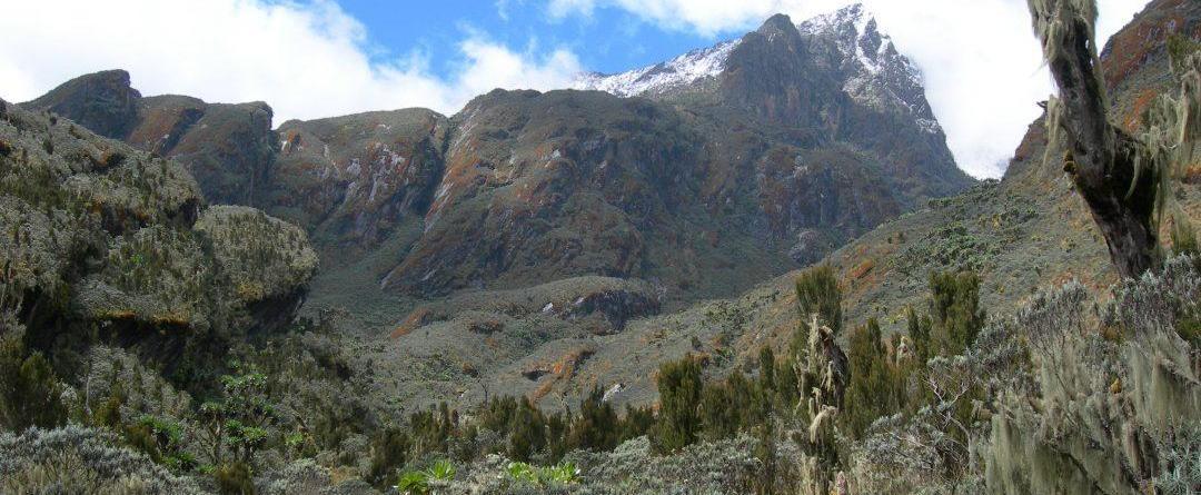 Mountain Hiking Safaris Fact sheet