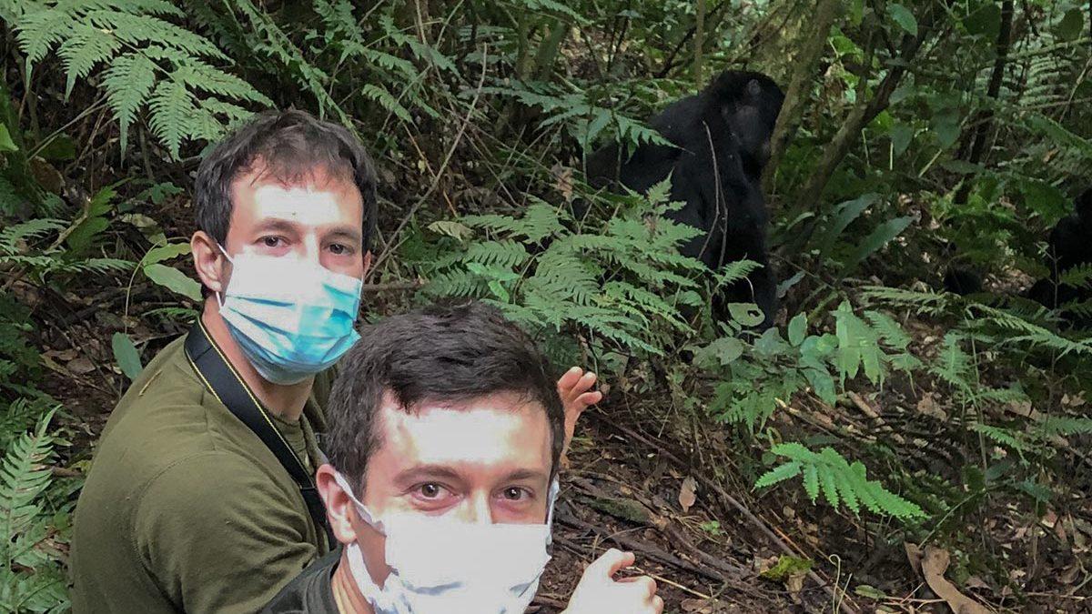Planning a Uganda Gorilla Safari During Covid-19